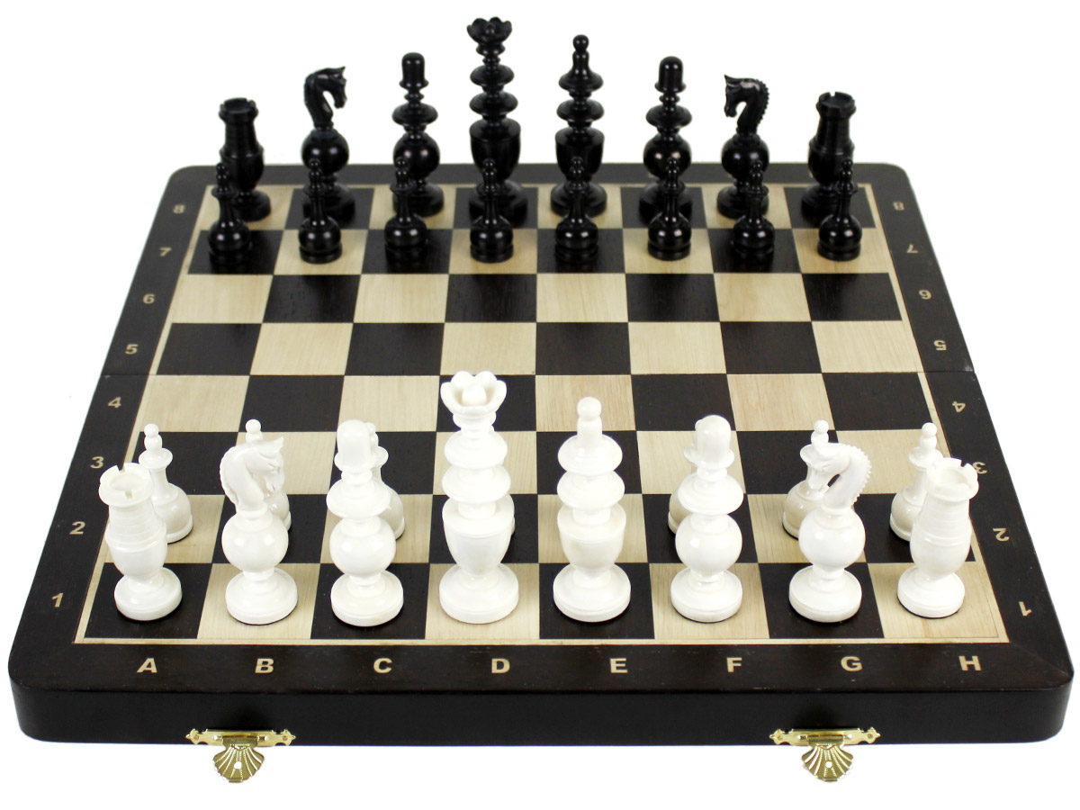 Front view of camel bone chess set and wenge wood board